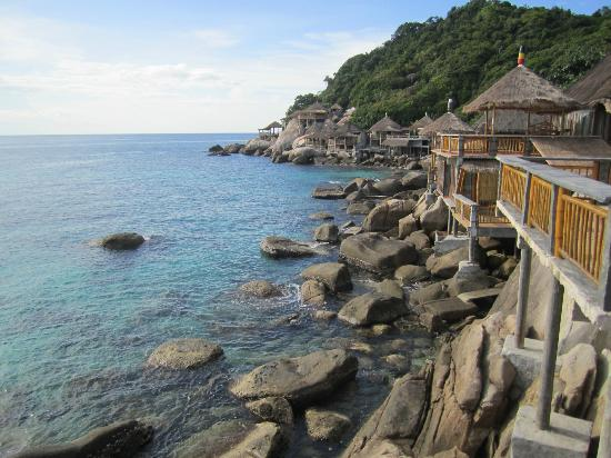 Koh Tao Bamboo Huts : Common view of the area