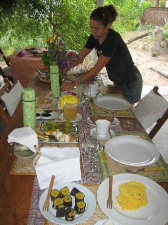 Eco-Pousada Casa Bobo: fantástico desayuno (café da mañá)