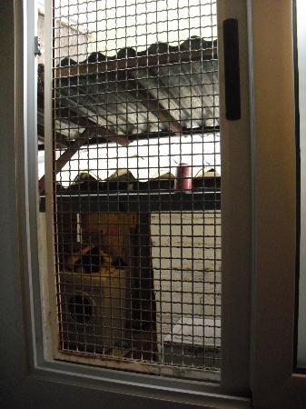 "Hostal Pension San Ramon: ""Maravillosas"" vistas desde la habitación"