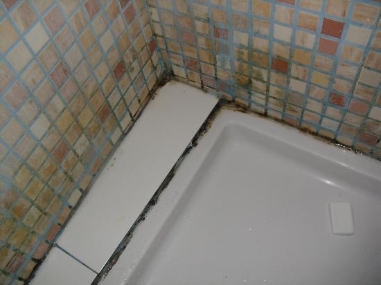 Hostal Pension San Ramon: Suciedad y juntas negras ducha
