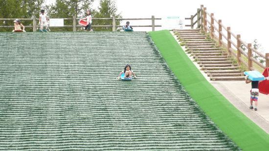 Bihoku Hillside Park: グラススラーダー(無料)
