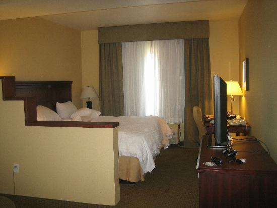 Hampton Inn Phoenix-Airport North: Bed and desk