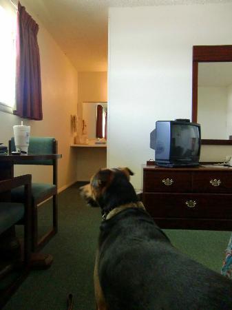 Cherokee Inn: Basic room