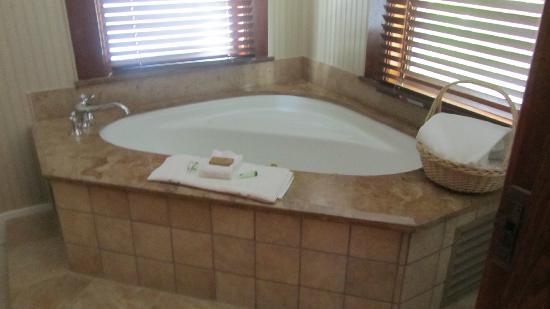 Amsterdam's Curry Mansion Inn: Jacuzzi Bath