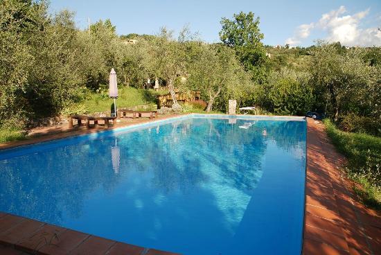 Agriturismo Foddi: ampio giardino con piscina