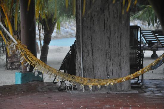 Senari Bay Resort: There are a few swings