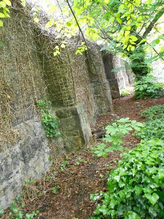 Iveagh Gardens : Wall surrounding the garden