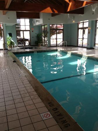 Detroit Metro Airport Marriott: Pool