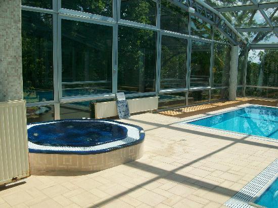 Hotel Villa Vera : pool mit jacuzzi