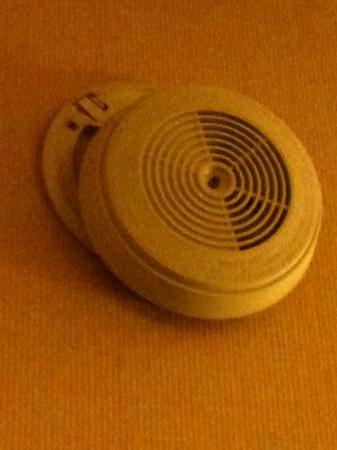 Lancaster Family Resort: Broken Smoke Alarm