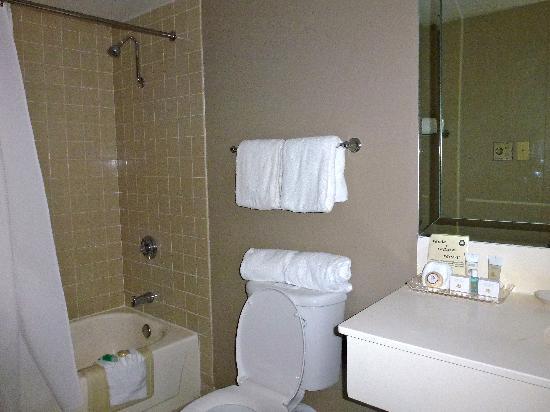 Crockett Hotel: salle de bain