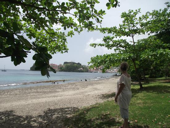 Coral Cove Cottages & Apartments : Coral Cove's beach looking southwards. Usually deserted, but safe.