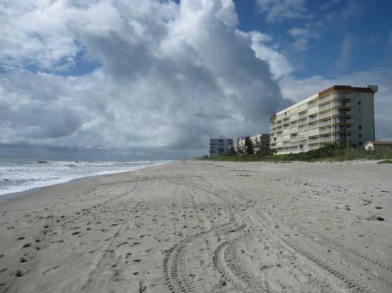 Oceanfront Paradise Resort: Indialantic Beach