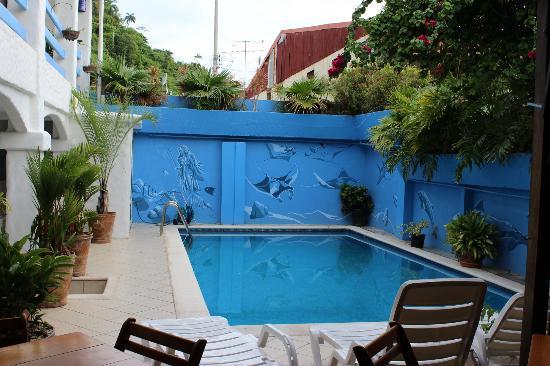 Serenity Boutique Hotel Quepos: Pool area