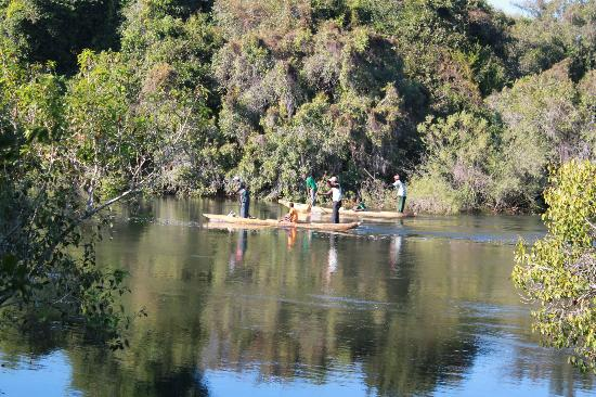 Royal Chundu Luxury Zambezi Lodges: View from room, occasional fishermen pass by