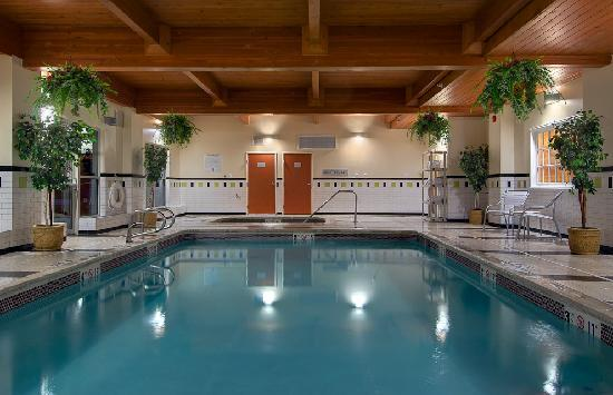 Fairfield Inn & Suites Denver Airport : Pool