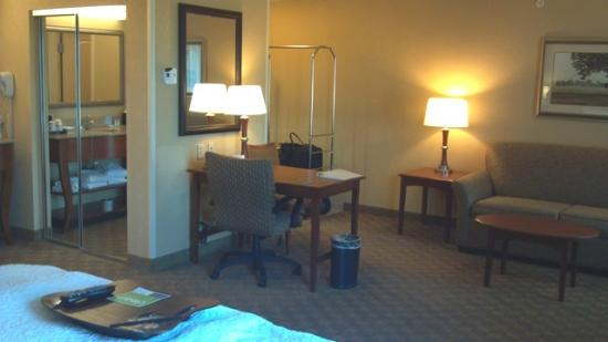 Hampton Inn & Suites Paducah: Room