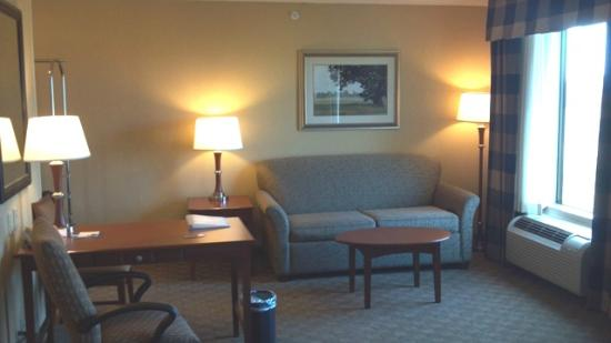 Hampton Inn & Suites Paducah: Sitting area with sofa sleeper and TV