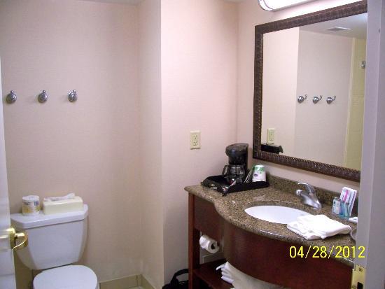 Hampton Inn & Suites by Hilton - Guelph : Bathroom
