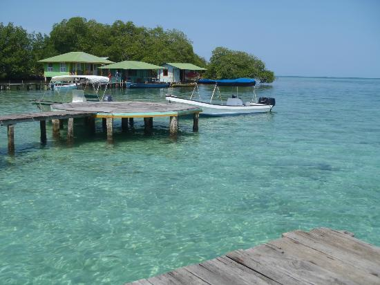 Coral Cay Cabins : the resort