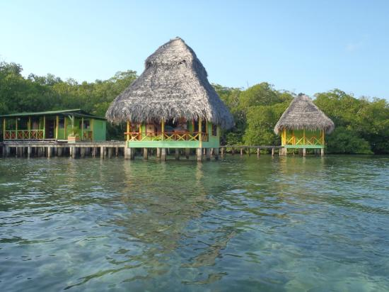 Coral Cay Cabins: views from the kayak