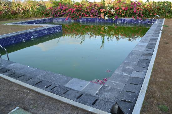 Chateau de Bali Ungasan: Flowers growing in to the dirty pool