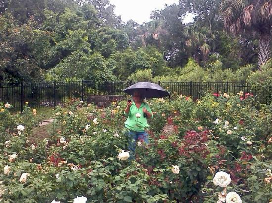 Washington Oaks Gardens State Park: my companion in her element