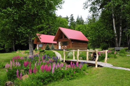 Tweedsmuir Park Lodge & Bear Viewing: Bobcat and Black Bear chalets at Tweedsmuir Park Lodge. Photo: Mike Wigle