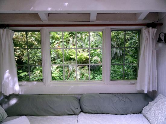 Bridal Veil Lodge: Partial view from inside Cottage