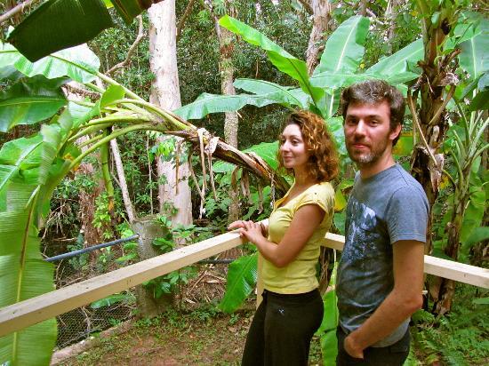 Villa Marine: rainforest che si puo' toccare con un dito