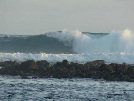 San Cristobal, Ecuador: Olas para surf