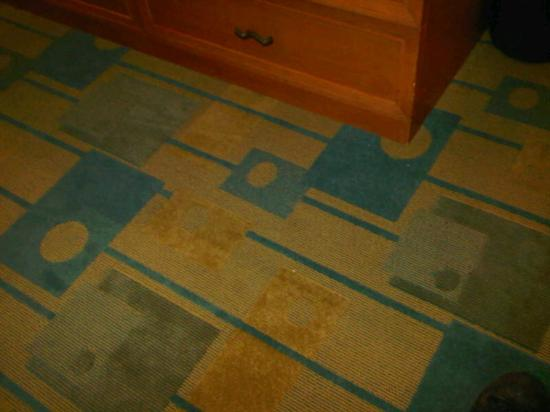 La Quinta Inn Amarillo West Medical Center : funky carpet in room