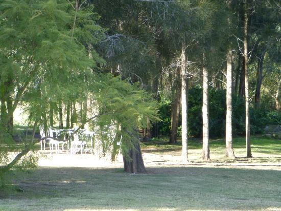 Thistle Hill Guest House: A view of the beautiful grounds