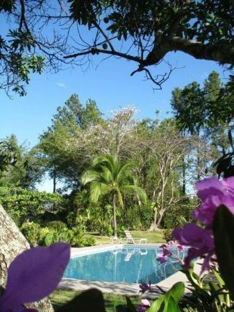 Quinta Celeste: Tolle Pool-Landschaft, so stelle ich mir den Traumurlaub vor....