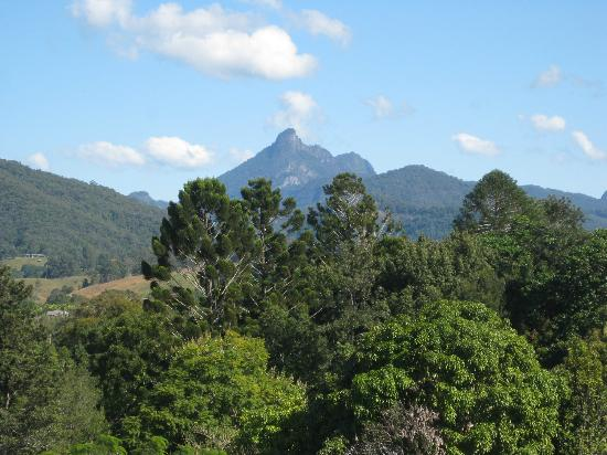 Murwillumbah, Австралия: Mt Warning from gallery balcony