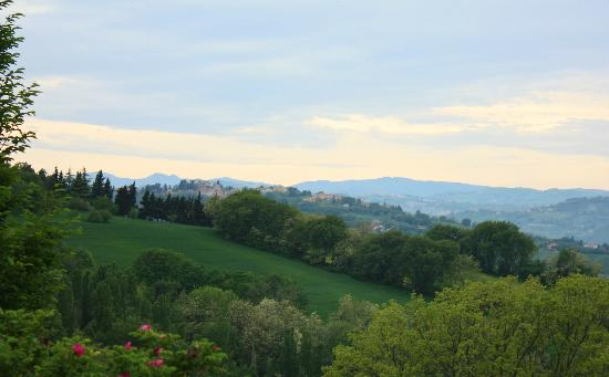 Villa Casula: view from garden