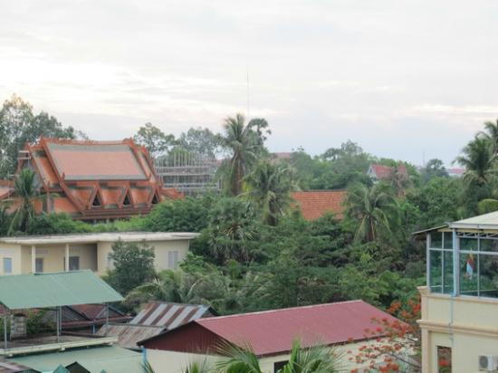 Rithy Rine Angkor Hotel: distant view of surroundings