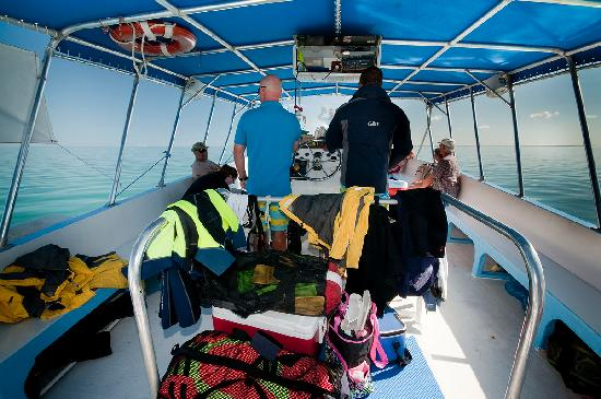 Moby Dick Tours : Singray City - On board Moby Dick