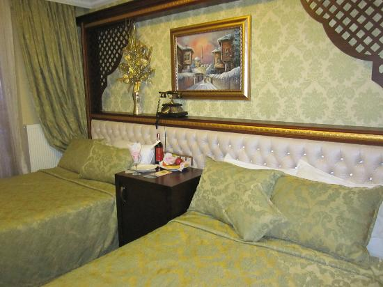 Salinas Istanbul Hotel: Our room
