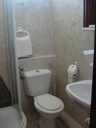Korona Pension: toilet