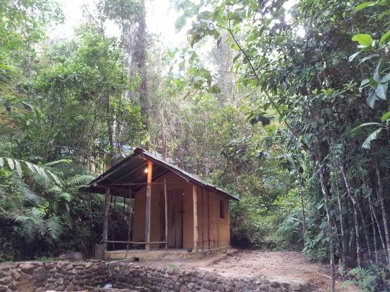 Rainforest Retreat: Hydro Power station