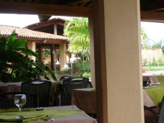Hôtel de la Palmeraie : Vue  hôtel