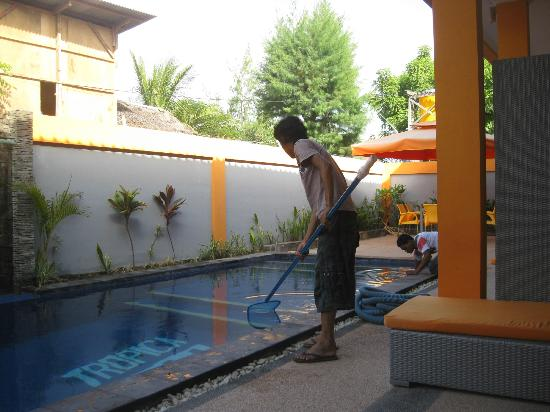 Tropica Exclusive Apartment and Superior Room : swimming pool