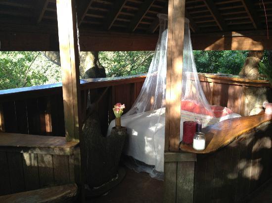 Ridge to Reef Farm at VISFI : Tree House
