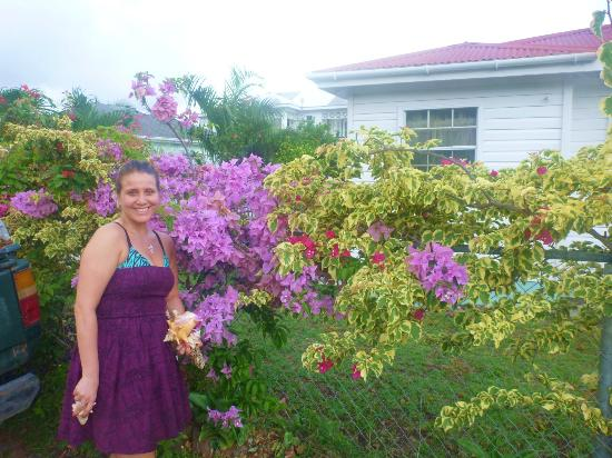 ReefView Apartments: beautiful flowers all over grounds