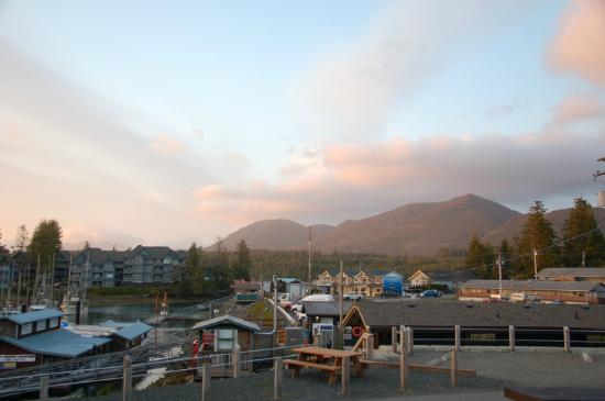 West Coast Motel on the Harbour: Just another view