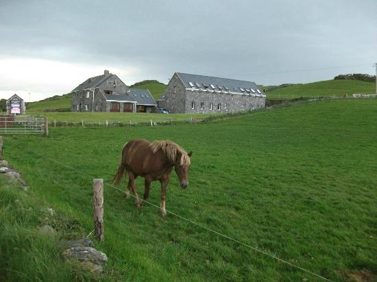 The Lodge, Doolin: Doolin Activity Lodge