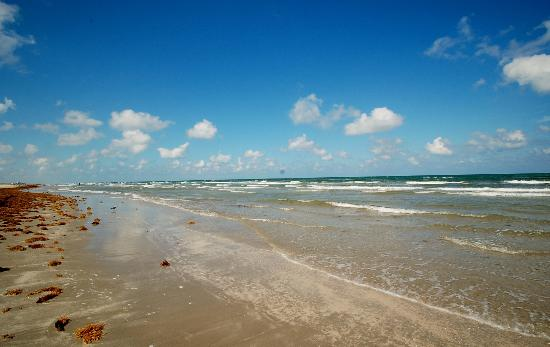 Padre Island National Seashore: The coastline at Padre Island