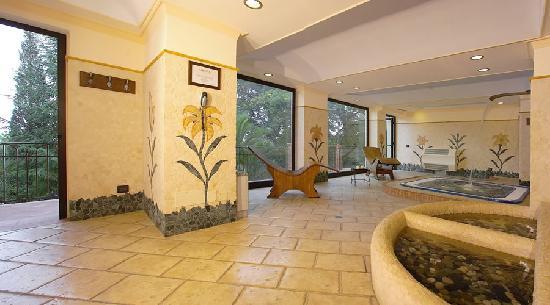 Airone Wellness Hotel: Centro Benessere