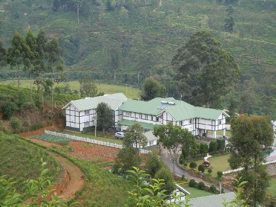 Amaya Langdale: View from tea fields above the hotel